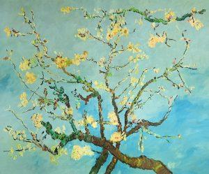 Vincent van Gogh Kwitnąca gałąź migdałowca