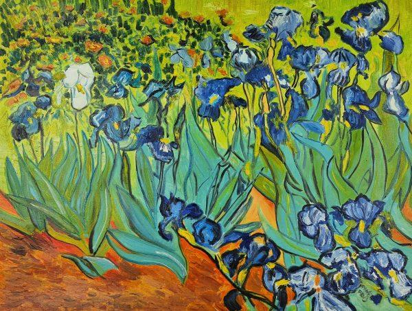 Vincent van Gogh Irysy